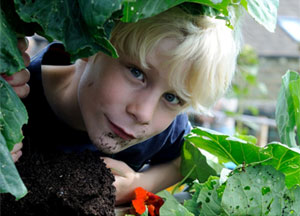Growing works (incorporating Holme Valley Gardening Network) image